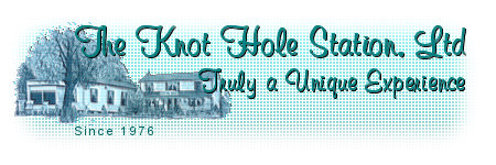 Collectibles and Figurines at the Knot Hole Station